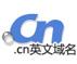 .cn英文域名